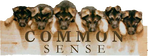 Picture of German Shepherd puppies leaning over a wall that says COMMON SENSE